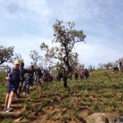 Hiking in the berg